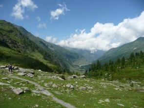 me in alpine meadow